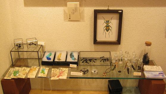 もぞもぞ 虫・蟲 展 - mozomozo mushimushi ten -      たまごの工房 企画展その9_e0134502_1412053.jpg