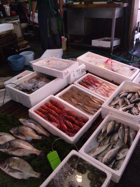 「田崎市場」 ウォッチング_b0228113_1529102.jpg