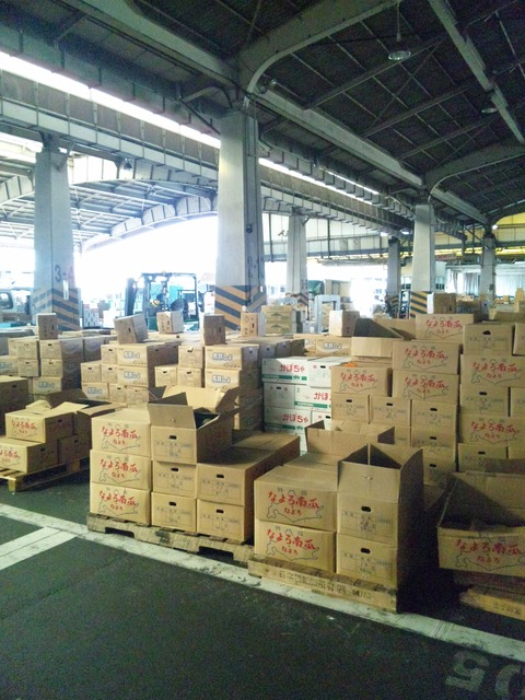「田崎市場」 ウォッチング_b0228113_1529527.jpg