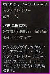 b0062614_16325463.jpg