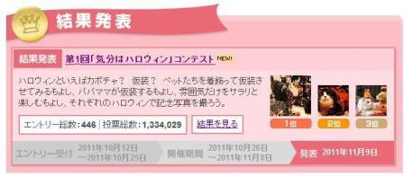 Yahoo!ペット第1回「気分はハロウィン」フォトコンテスト第1位第2位猫。_a0143140_23282142.jpg