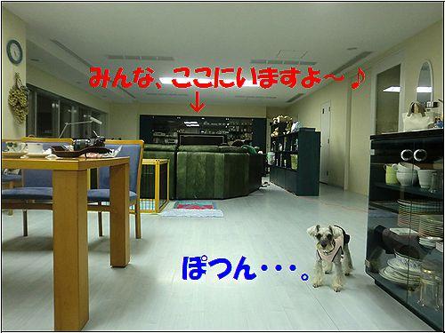 b0206444_1883528.jpg