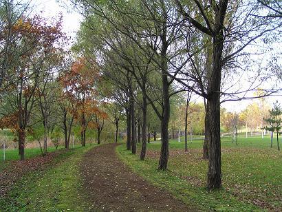 東山公園_f0078286_9364949.jpg