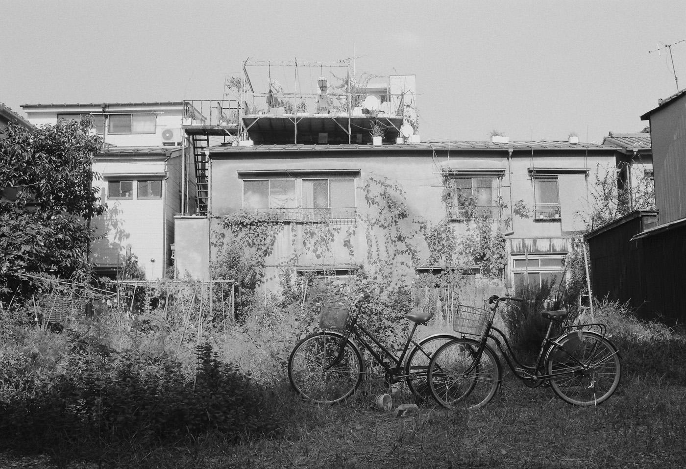 根津の自転車。_c0120903_1145149.jpg