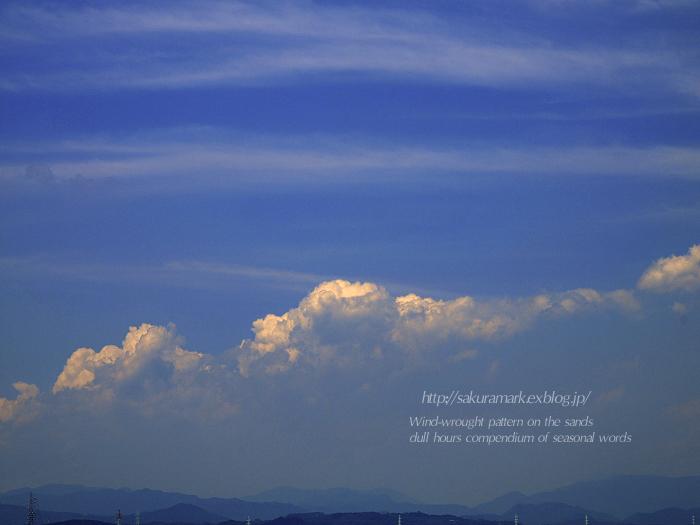 今年の夏、初めての入道雲_f0235723_16205567.jpg