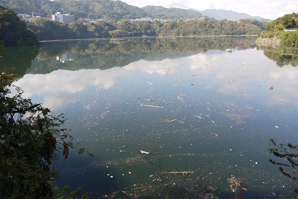 <b>津久井湖</b>・中沢山 : 季節(いま)を求めて