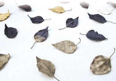 時を閉じ込めた落ち葉をひろいに_a0017350_013442.jpg