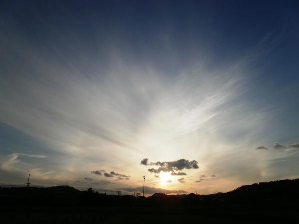2011年11月11日・・特別な日_a0174458_23435111.jpg