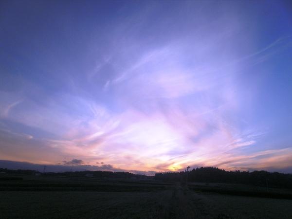 2011年11月11日・・特別な日_a0174458_23464823.jpg