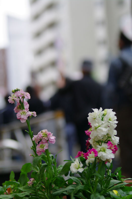 10・30渋谷 TPP断固拒否国民デモ - 2011.10.30_a0222059_15343995.jpg