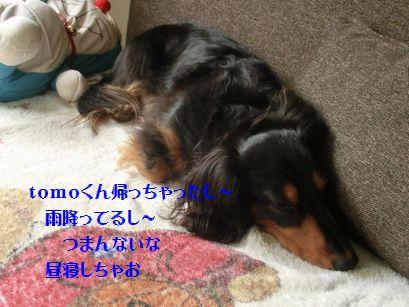 b0222559_2053719.jpg