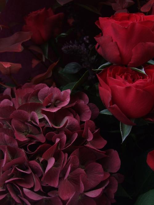 オークリーフ(赤い紫陽花をお誕生日に束ねて・・・)_f0049672_143614.jpg