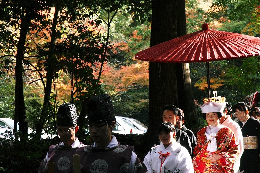 坂本の紅葉1 日吉大社_c0196076_138153.jpg