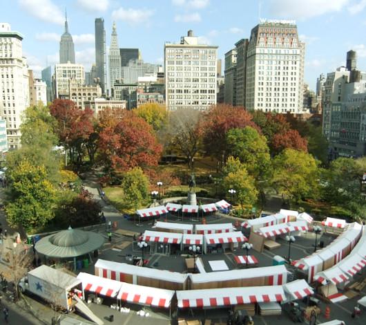 紅葉のニューヨーク、野生のリスくんたちは大忙し_b0007805_9201472.jpg