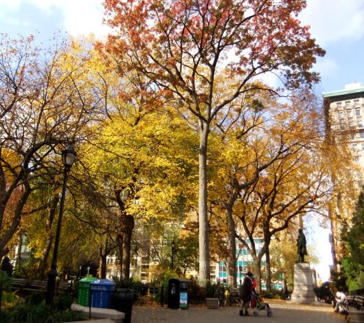 紅葉のニューヨーク、野生のリスくんたちは大忙し_b0007805_9204887.jpg