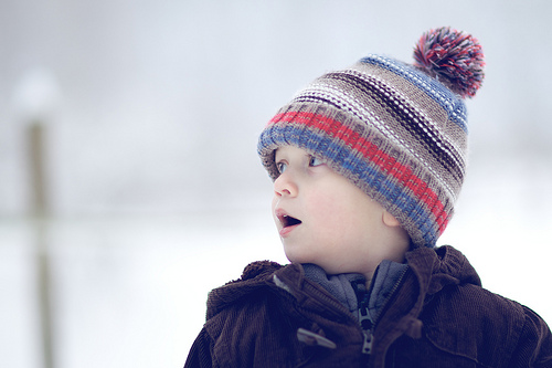 風邪の流行る時期に向けて_a0213308_16531611.jpg