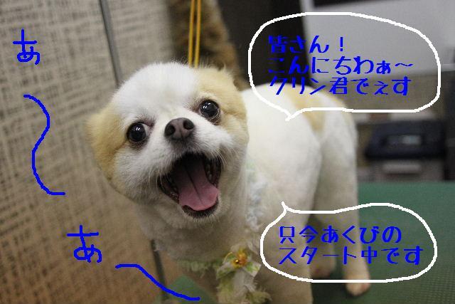 嬉しいサプライズ♪_b0130018_164851.jpg