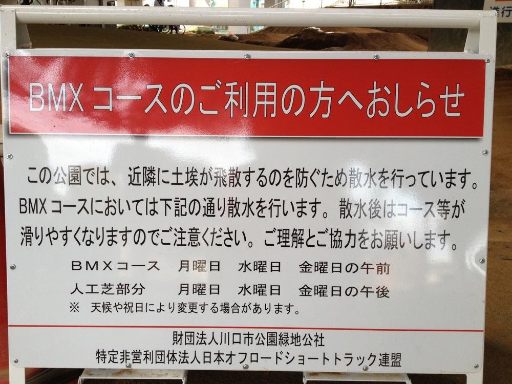 ゴリラ公園からのお知らせ(永久保存版)_b0136231_2035955.jpg