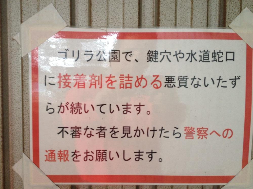 ゴリラ公園からのお知らせ(永久保存版)_b0136231_20433314.jpg