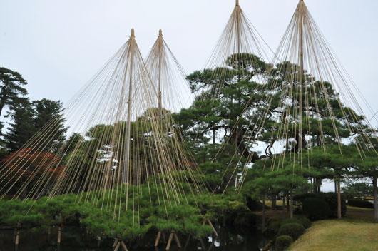 秋めく兼六園(1)_c0093046_5302993.jpg