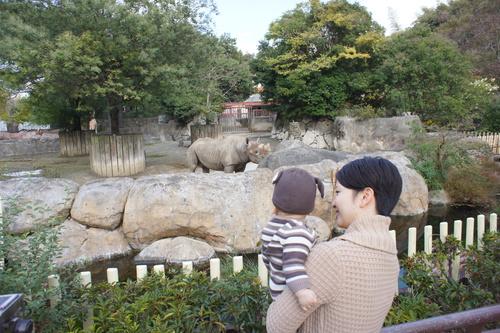 初動物園_e0142956_15264723.jpg