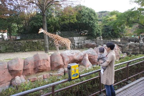 初動物園_e0142956_15282988.jpg