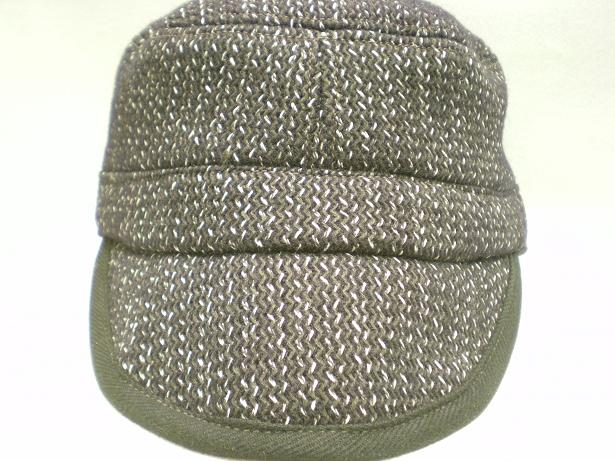 SHELTER CAP_d0160378_19405523.jpg
