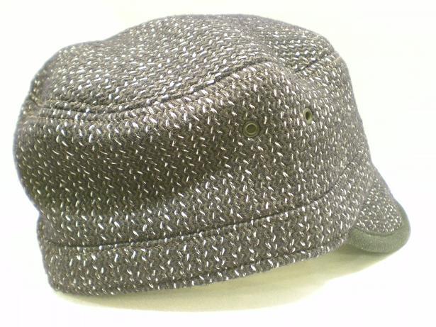 SHELTER CAP_d0160378_19411387.jpg
