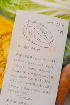 *休日ブログ*野菜をたべなくちゃ!キシノウエンさんのお試し便_a0115684_20483279.jpg