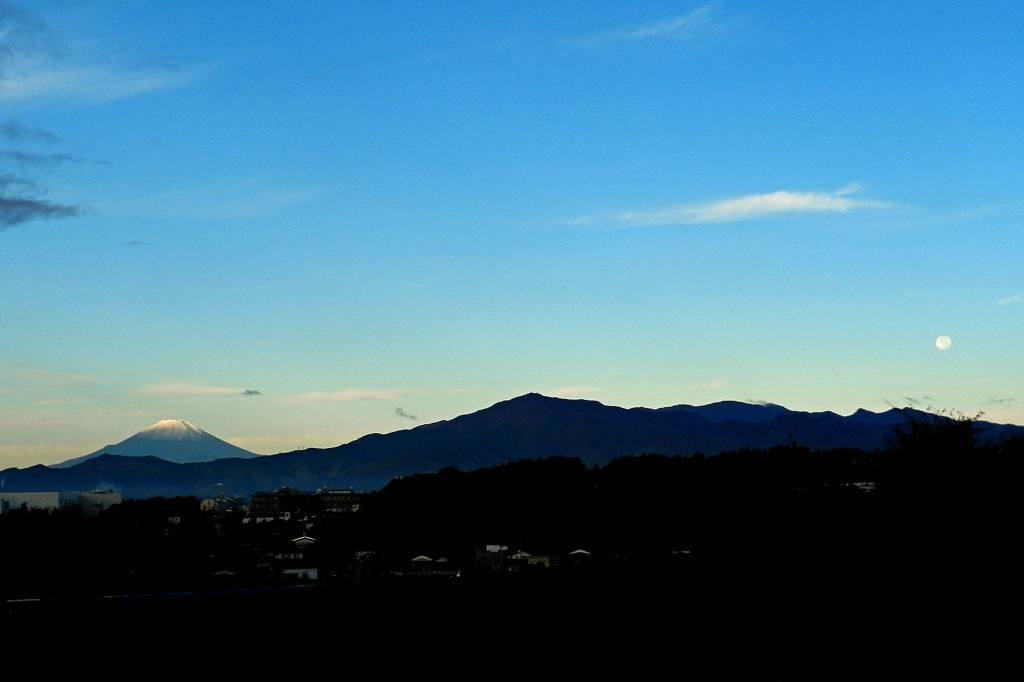 これが富士山だ/111111/キイロミツスイ_b0024798_9191467.jpg