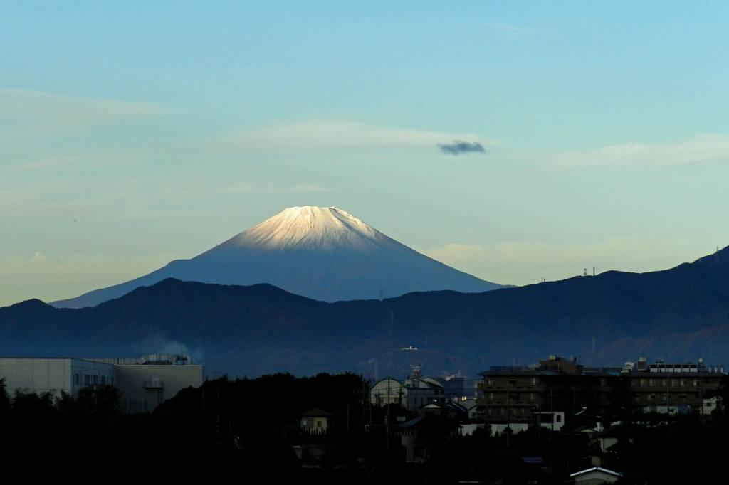 これが富士山だ/111111/キイロミツスイ_b0024798_9191850.jpg