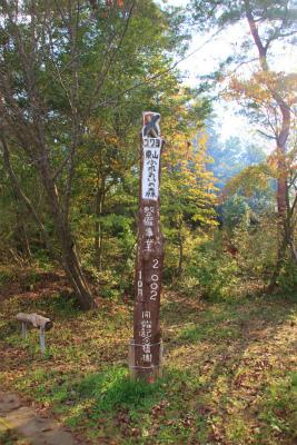 東山ふれあいの森ハイキング&樹木観察_d0055236_23202486.jpg