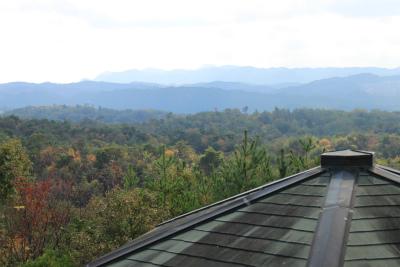 東山ふれあいの森ハイキング&樹木観察_d0055236_23245793.jpg