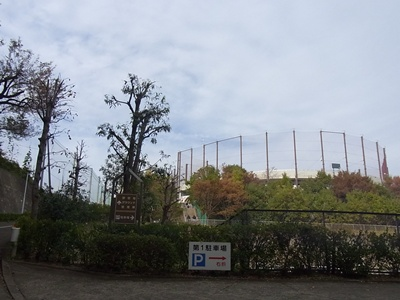 小野寺公園1