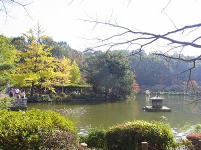 薬師池公園1