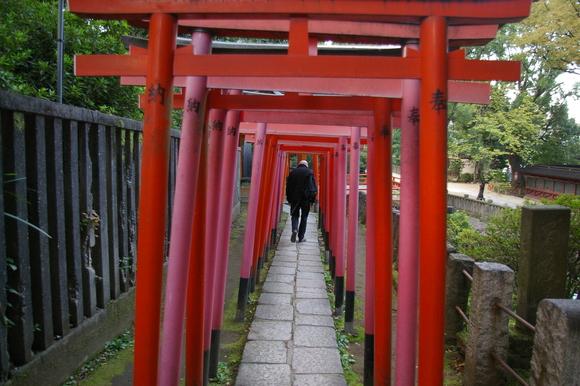 根津・谷中散策/ Walking around Nezu & Yanaka_a0186568_9261269.jpg