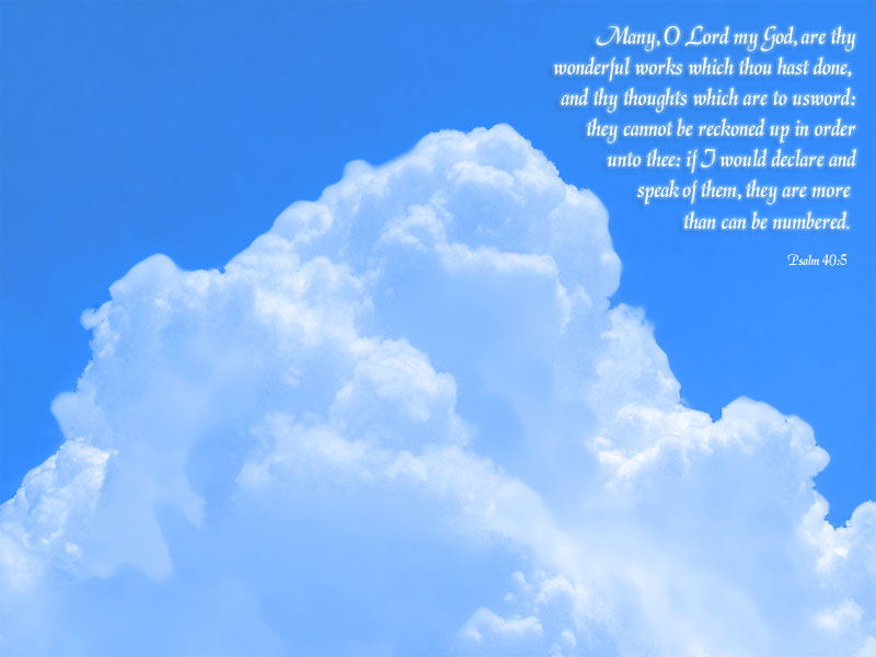 11月13日使徒10-12章『人間の既成概念を越える聖霊の働き』_d0155777_731265.jpg