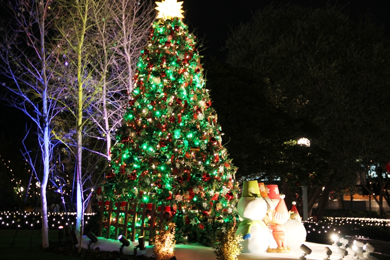 Tokyo Disneyland ~夜景編~_a0127090_23264943.jpg