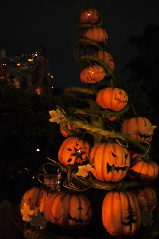 Tokyo Disneyland ~夜景編~_a0127090_232903.jpg