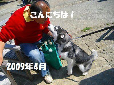 d0033151_20402326.jpg