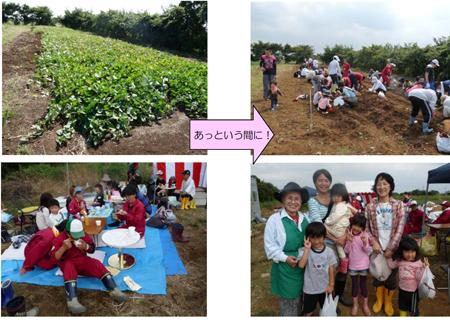 ~収穫祭~芋ほり_c0214657_13535388.jpg