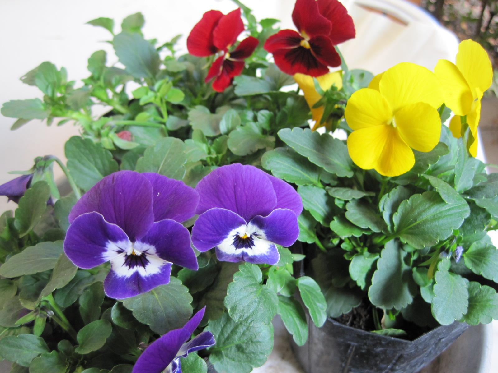 YUSHI CAFE_f0236260_1925992.jpg