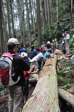 第9回 吉野の山を見るツアー その2_e0164563_15502196.jpg