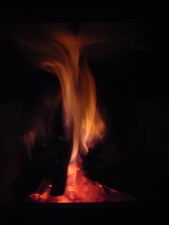 自然の恵みで暖まる_d0021969_9153081.jpg