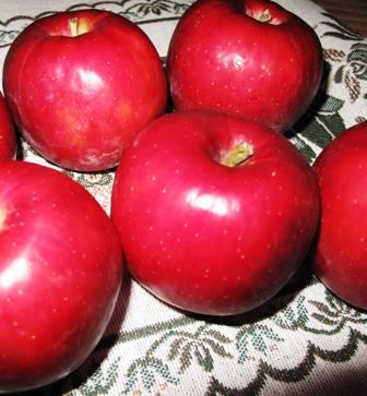 紅玉りんごジャム_a0077673_21435684.jpg