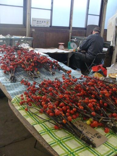 富士山_a0195373_118061.jpg