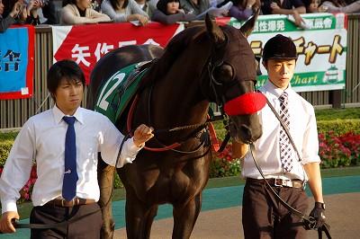 武蔵野Sは、オープン大将からついに卒業、ナムラタイタンが嬉しい重賞初制覇_b0015386_0181249.jpg