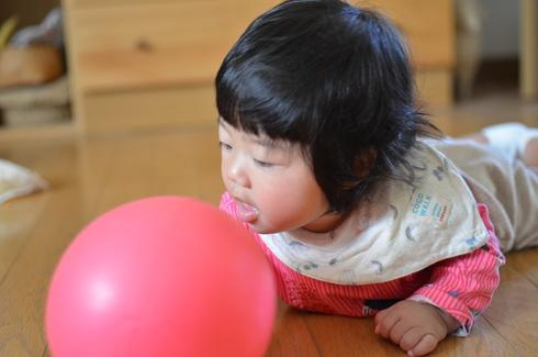 ボールと遊ぶ。_b0079897_23111499.jpg