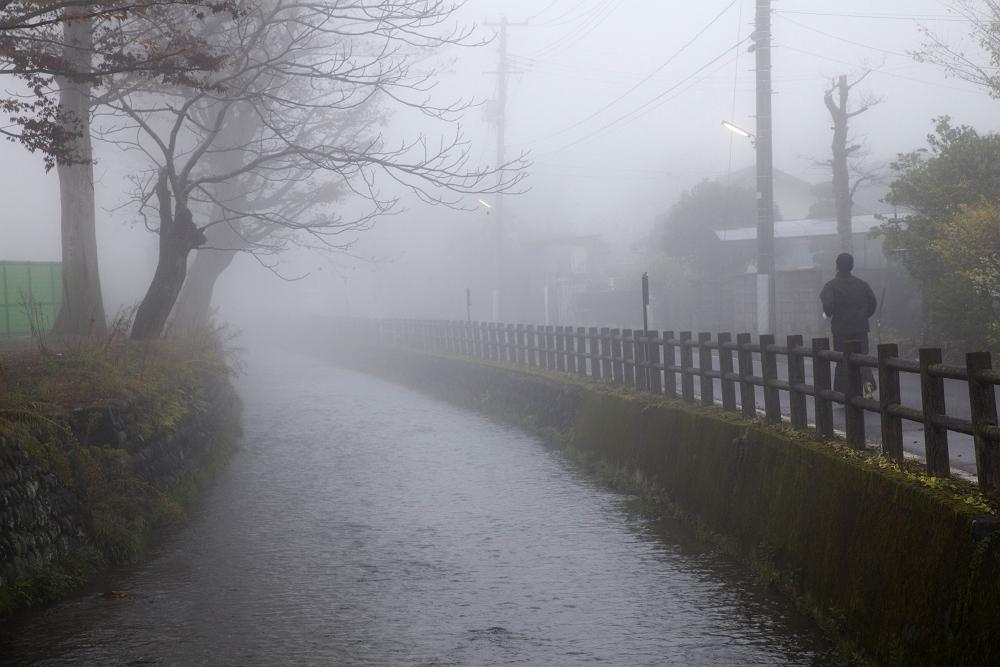 霧の街_b0074098_23205324.jpg
