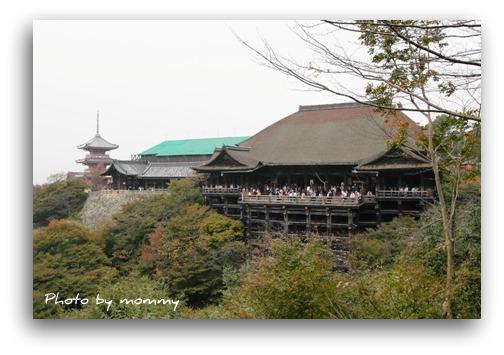 11/5 京都_a0169912_2317338.jpg